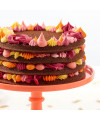 moules-layer-cake-ronds-wilton