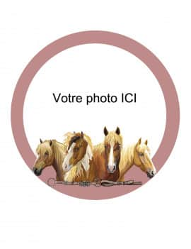 photo-comestible-ronde-modele-cheval-20-cm