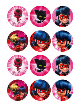 12 disques à cupcakes comestibles Lady Bug